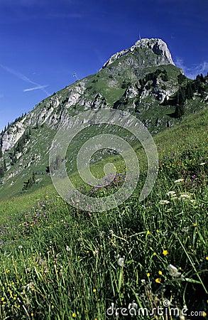 Stockhorn summit