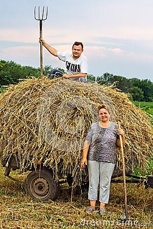 Free Stocking Up Of Hay Stock Photo - 17476430
