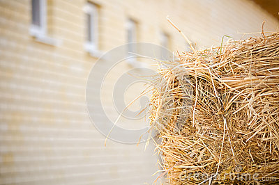 Stocks of hay near the stables