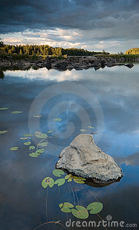 Free Stone And Lilys In The Lake Stock Photo - 3831850