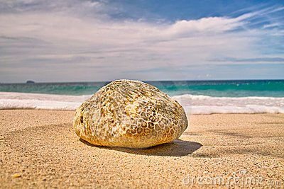 Stone on the Beach