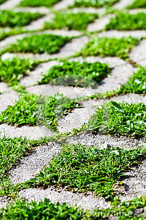 Free Stone Block Walk Path With Green Grass Royalty Free Stock Image - 38998656