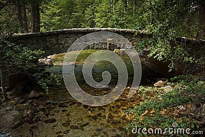 Stone bridge over a valley stream in Yosemite