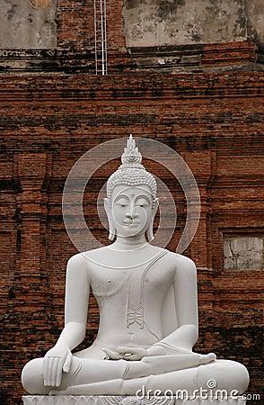 Free Stone Buddha Stock Photography - 500972