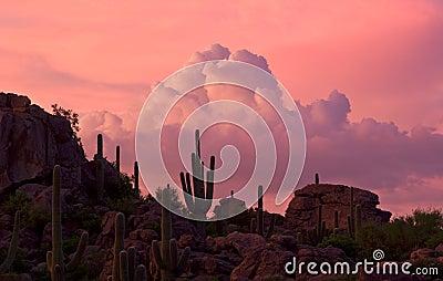 Stone Canyon Sunset