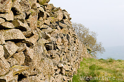 Stone field boundary wall