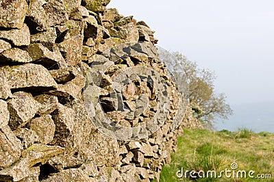 Stone field boundary wall