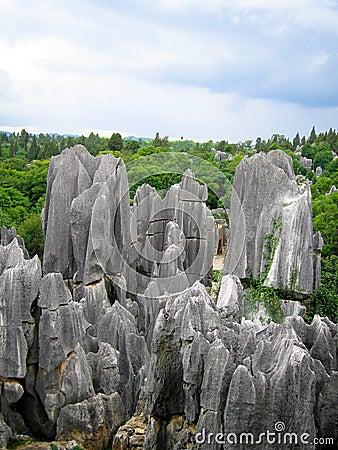 Free Stone Forest Horizon Royalty Free Stock Photos - 2757958