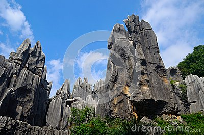 Stone forest and sky