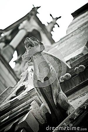 Free Stone Gargoyles Of Notre Dame Stock Photos - 29432353