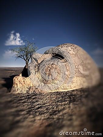 Stone Head 1