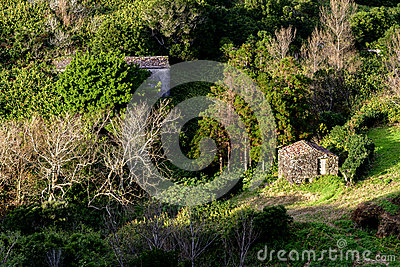 Stone house in wood, Flores island, Azores archipelago (Portugal