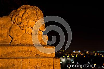 Stone lion and urban jungle