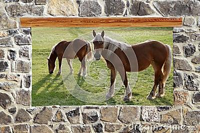 Stone masonry wall window horses meadow view