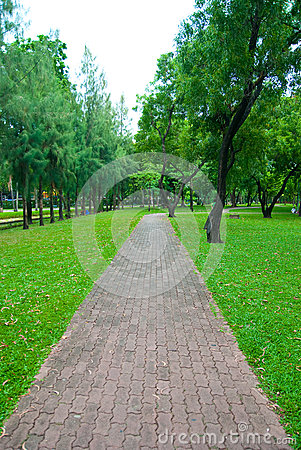 Stone Pathway in the lumpini park