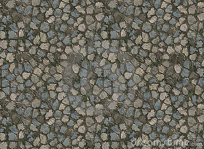 Stone paver tiled path