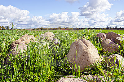 Stone stack pile grass surround agricultural field