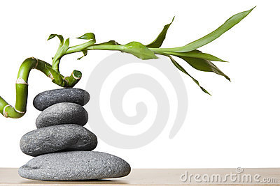 Stone Stack and Spiral Bamboo