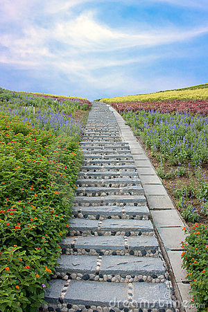 Stone stairway with flowers and blue sky
