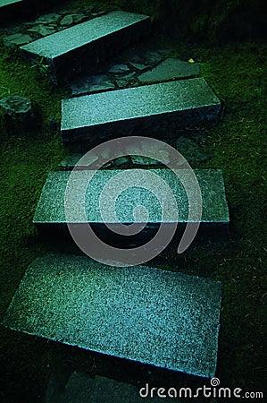 Stone steps in japanese garden