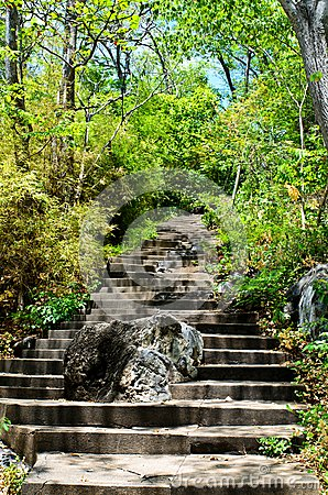 Stone steps leading up hill