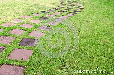 Stone walkway line in the garden