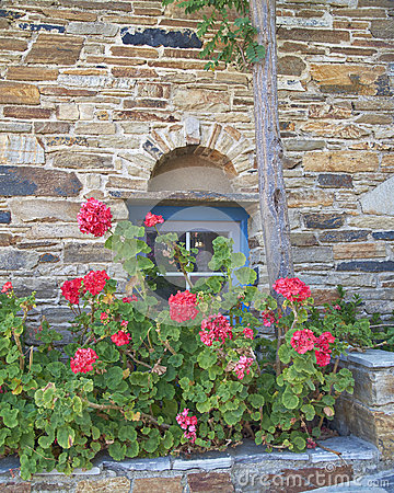 Stone wall with blue window and flowers