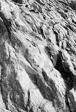of the stone wavy monochrome