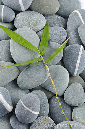 Stones and bamboo-leave