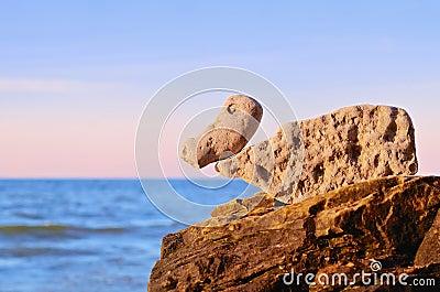 Stones Duck