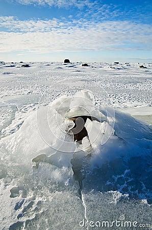 Stones in the ice on the Sea coast