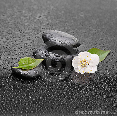 Stones with leaf and flower