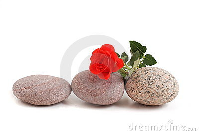 Stones with red rose