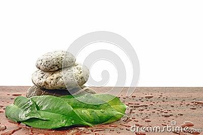 Stones Spa Zen harmony