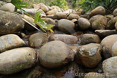 Stones and streams