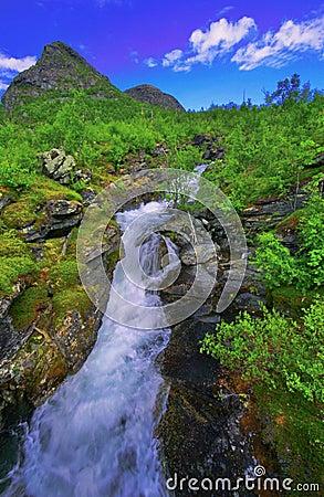 Stora sjofaletes national park