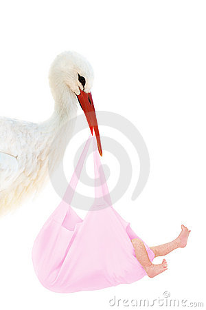 Stork with baby in pink bag