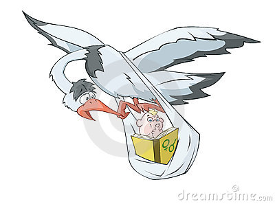 The stork is carrying the baby reading the book