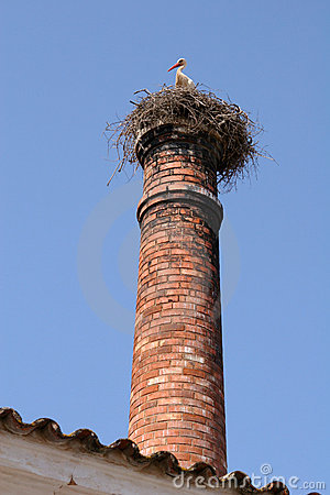 Stork on chimney stack nest