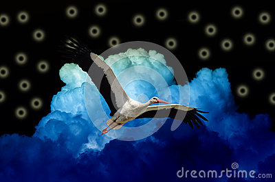 Stork Flying in Black Magic Sky with Blue Clouds
