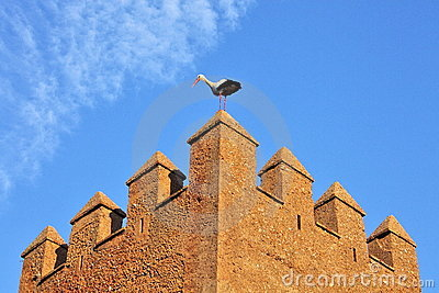 Stork on fortress wall