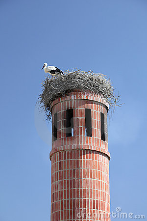 Free Stork In Nest Royalty Free Stock Photos - 15141568