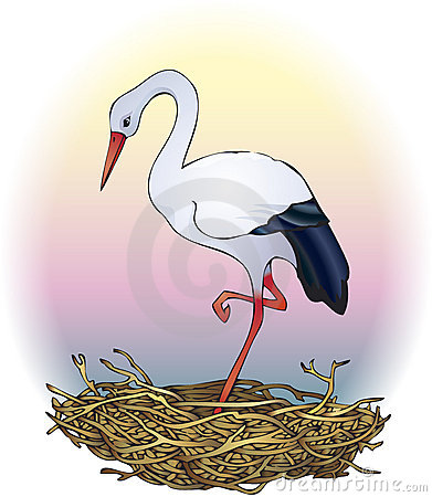 Free Stork In The Nest Royalty Free Stock Photography - 14469187