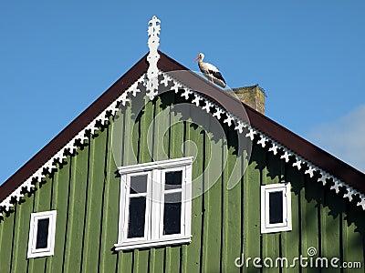 Stork on roof