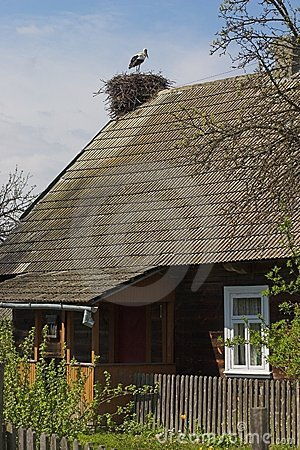 Stork s nest on a house