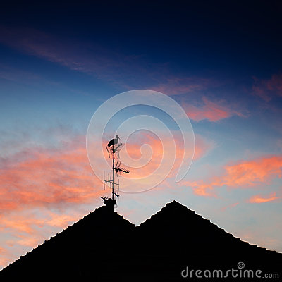 Free Stork Silhouette Standing Roof Stock Photos - 38944963