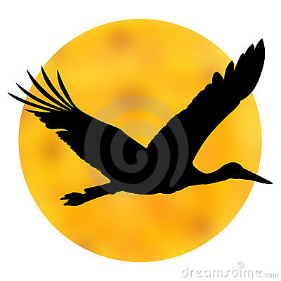 Stork sun silhouette.