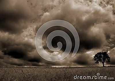 Storm....(4)