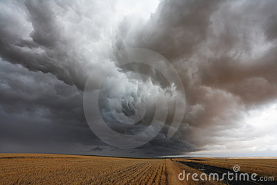 The storm cloud