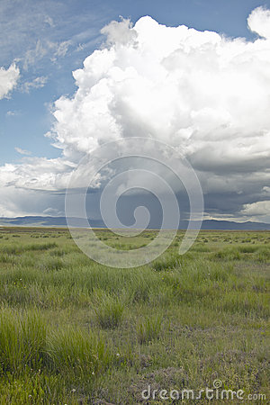 Free Storm Clouds Over Grasslands And Mountains At Red Rock Lake In Centennial Valley, Near Lakeview, MT Stock Images - 52270114